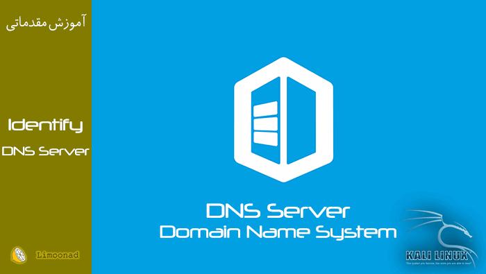 شناسایی DNS وب سرور توسط کالی لینوکس